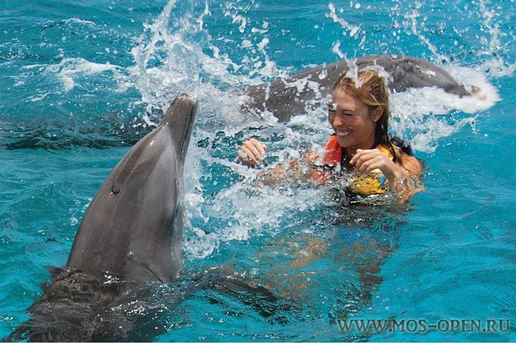 Плавание с дельфинами в Москве на ВДНХ