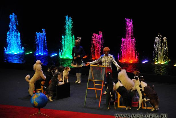 Цирк Танцующих Фонтанов «Аквамарин»