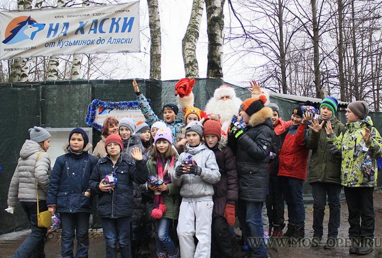 Прогулка с хаски в Кузьминках