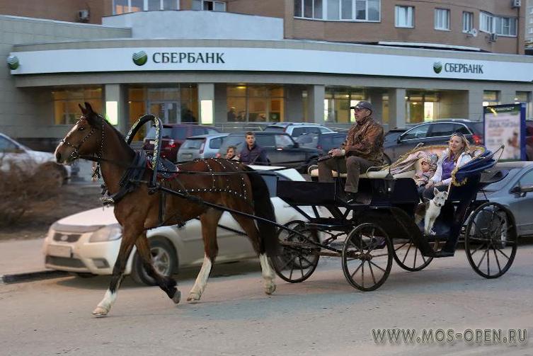 Зооферма в Дзежинске